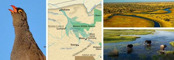 botswana-06-15-image1